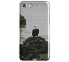 Eagle on a Rock iPhone Case/Skin