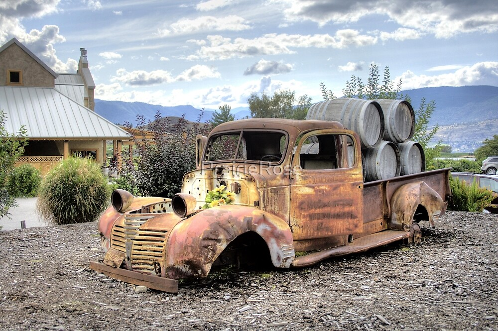 Rusty is Back! by PrairieRose