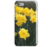 Flower Yellow like the Sun iPhone Case/Skin