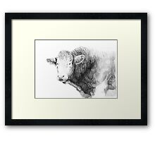 Cow Illustration 01 Framed Print