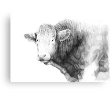 Cow Illustration 01 Canvas Print