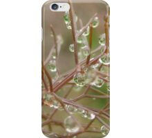 fennel iPhone Case/Skin