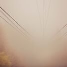 Into the Fog by vividpeach