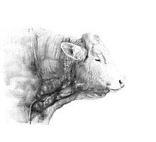Cow Illustration 02 Photographic Print