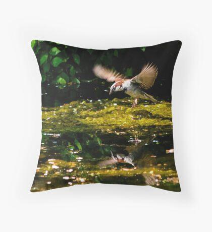 house sparrow flying Throw Pillow