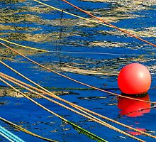 About a buoy by Sue Purveur