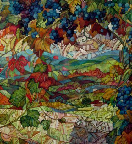 the vineyard Sticker