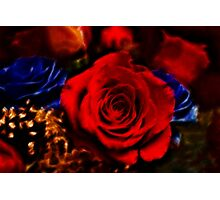 Red Rose Blue Rose Photographic Print