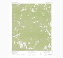 USGS TOPO Map Alabama AL Rockford SW 304967 1971 24000 Kids Tee