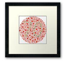 70 - Ishihara Color Test Framed Print
