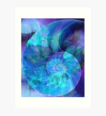Blue Nautilus Shell By Sharon Cummings Art Print