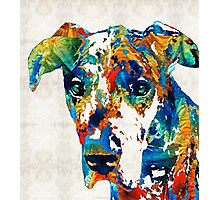 Colorful Great Dane Art Dog By Sharon Cummings Photographic Print