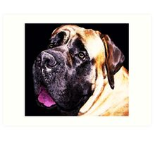 Mastiff Dog Art - Size Matters Art Print