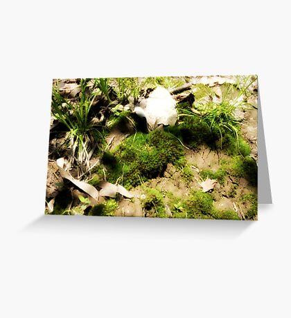 Venerable Earth Greeting Card