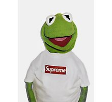 supreme Kermit Photographic Print