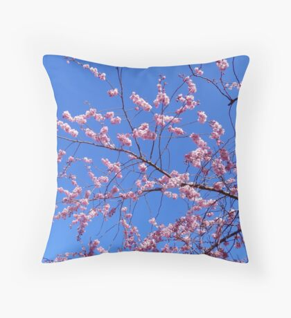 Spring is in the Air. Throw Pillow