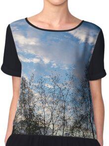 Sky Glory Through The Screen Of Trees Chiffon Top