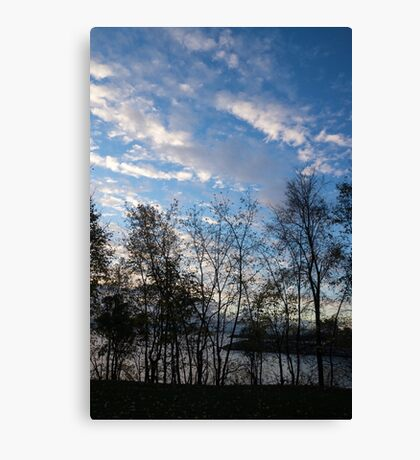 Sky Glory Through The Screen Of Trees Canvas Print