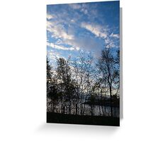 Sky Glory Through The Screen Of Trees Greeting Card
