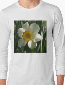 Poet's Daffodil Square Long Sleeve T-Shirt