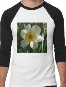 Poet's Daffodil Square Men's Baseball ¾ T-Shirt