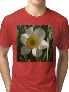 Poet's Daffodil Square Tri-blend T-Shirt