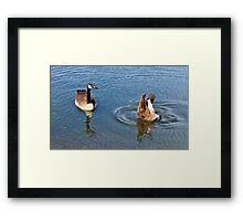 One Up One Down Framed Print