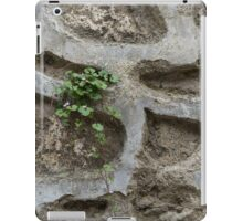 Life on Bare Rock - Trailing Down the Old Masonry Wall iPad Case/Skin
