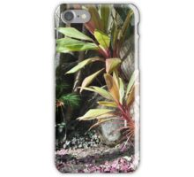 COLOURFULL PLANTS AND PALMS iPhone Case/Skin