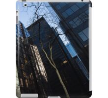 A Study in Contrasts - Downtown Toronto Miniature Park - Left iPad Case/Skin