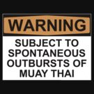WARNING: SUBJECT TO SPONTANEOUS OUTBURSTS OF MUAY THAI by Bundjum