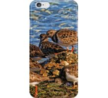 Ruddy's At The Beach iPhone Case/Skin