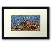 Ruddy's At The Beach Framed Print