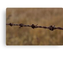 Barbed Wire in Decay Canvas Print