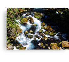 McKenzie River I Canvas Print
