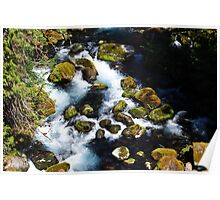 McKenzie River I Poster