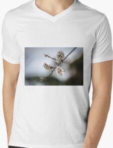 Spring Blossoms Mens V-Neck T-Shirt