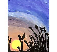 Sunset with Grass Photographic Print