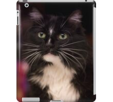 Jasper is 7 iPad Case/Skin