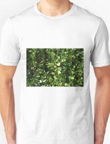 Green leaves pattern. T-Shirt