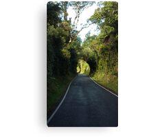 Road to Mt Taranaki Canvas Print