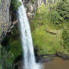 Bridal Veil Falls by Judi Rustage