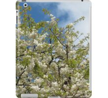 White Tree Blossoms against Blue Sky iPad Case/Skin