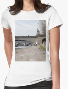 A Seagull On The Edge Of A River Bank On A Sunny Day Womens Fitted T-Shirt