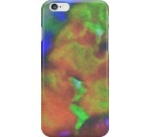 In the Company of Angels iPhone Case/Skin