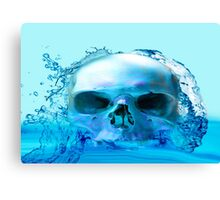SKULL IN WATER Canvas Print