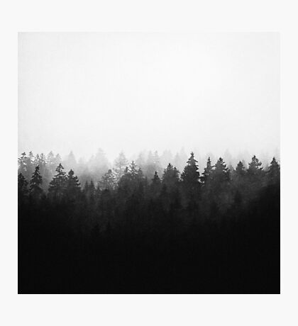 A Wilderness Somewhere Photographic Print