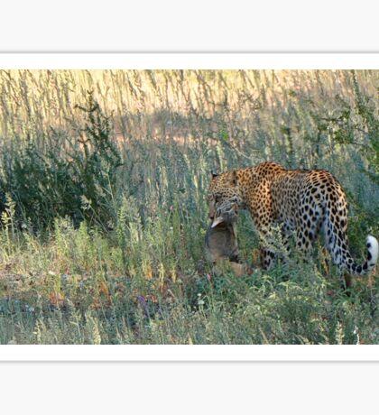 Leopard Kill Sticker