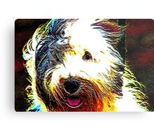 Sheepdog Metal Print