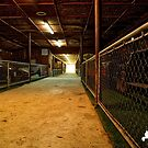 The Old Car Tunnel by TJ Baccari Photography